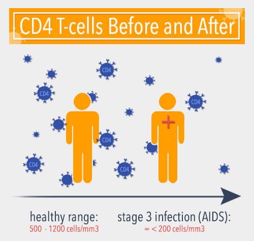 cd4 t-cells and hiv