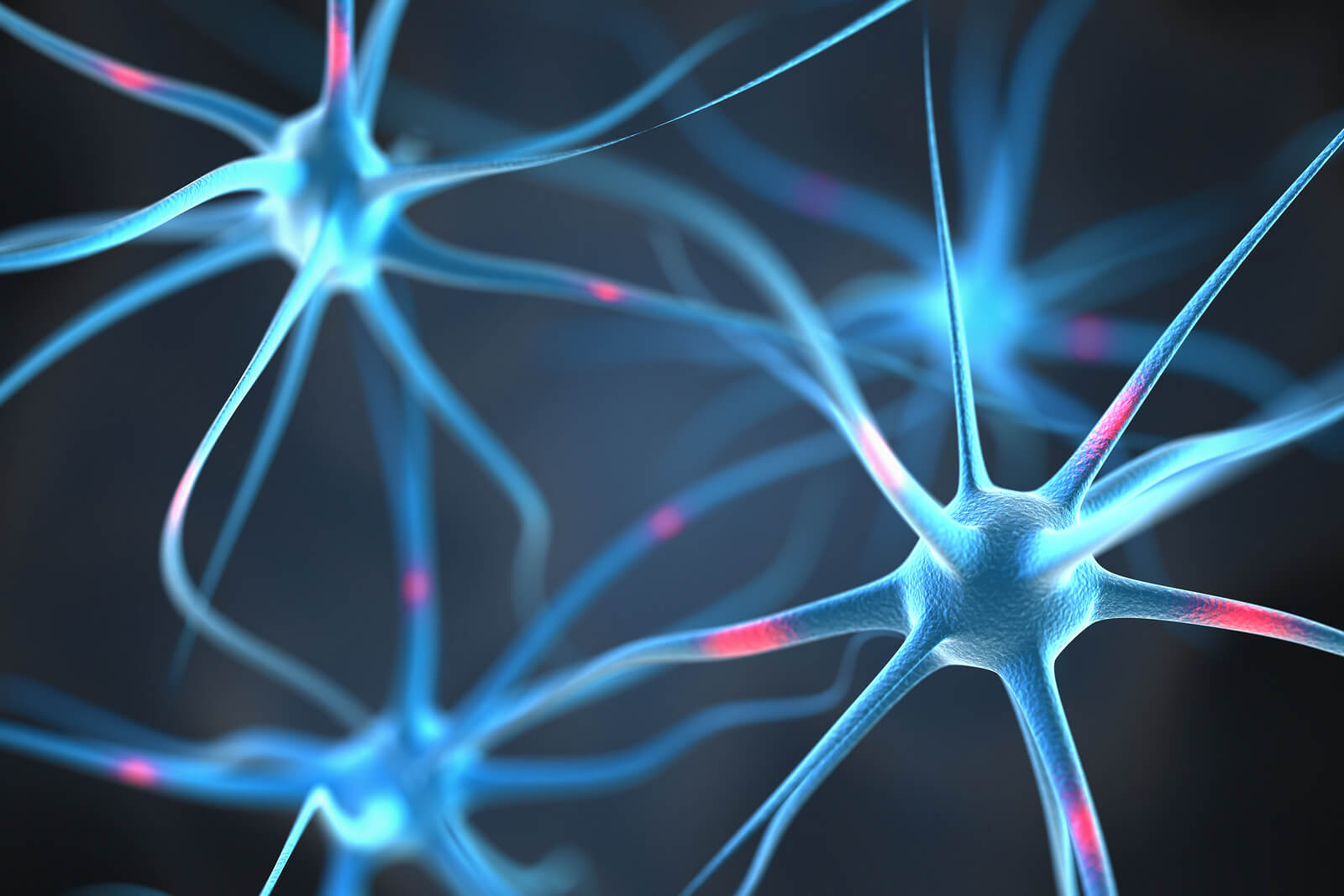 drugs affect the central nervous system by quizlet